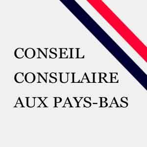 CONSEIL-CONSULAIRE-2016-300
